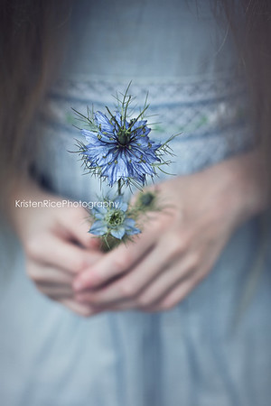 love in a mist hands Kristen Rice
