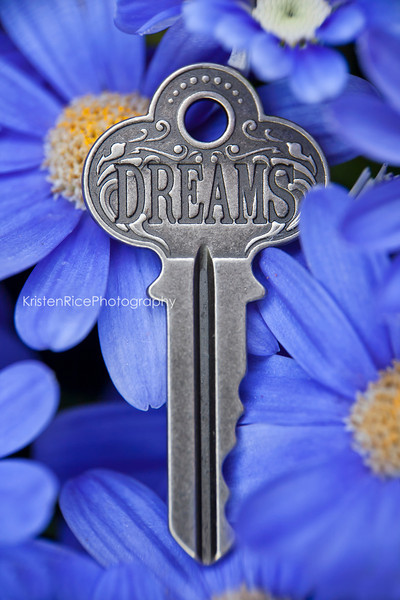 Dreams Key Blue Yellow Daisy