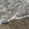 pebble beach - my favorite kind