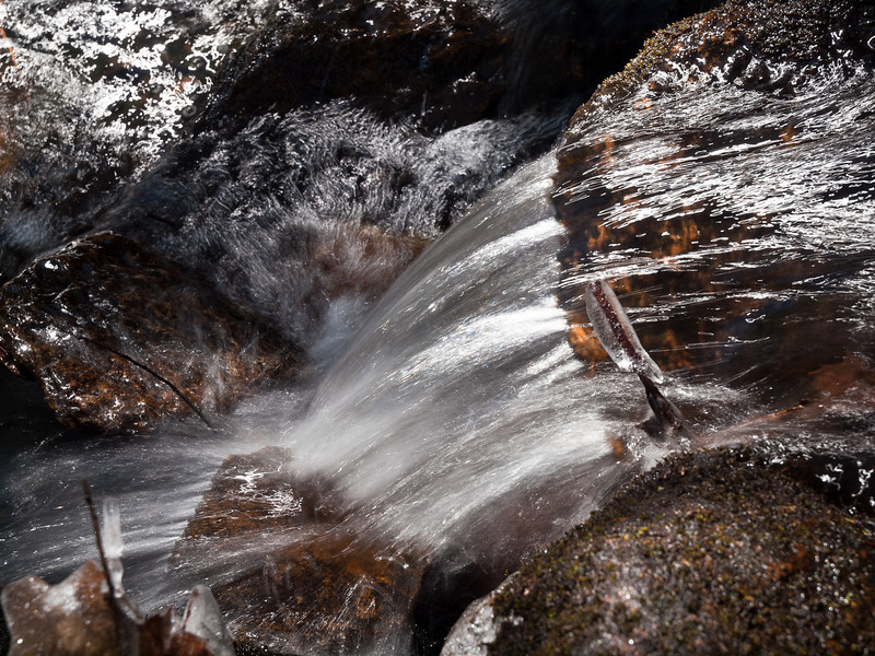 Detail of a winter stream at Pulpit Rock Conservation Area
