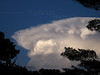 Developing Cumulonimbus & Anvil Cloud--  PA
