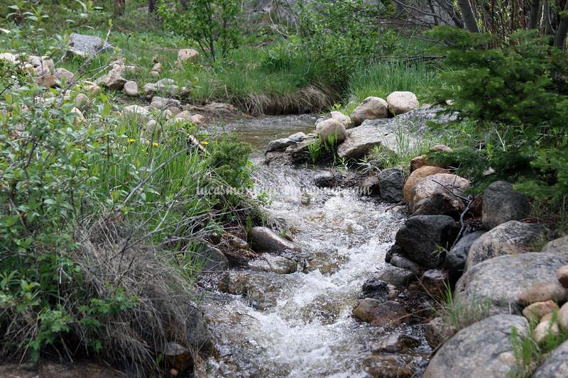 Grand Lake, Colorado;  Hiking the E. Inlet Trail - June 2011
