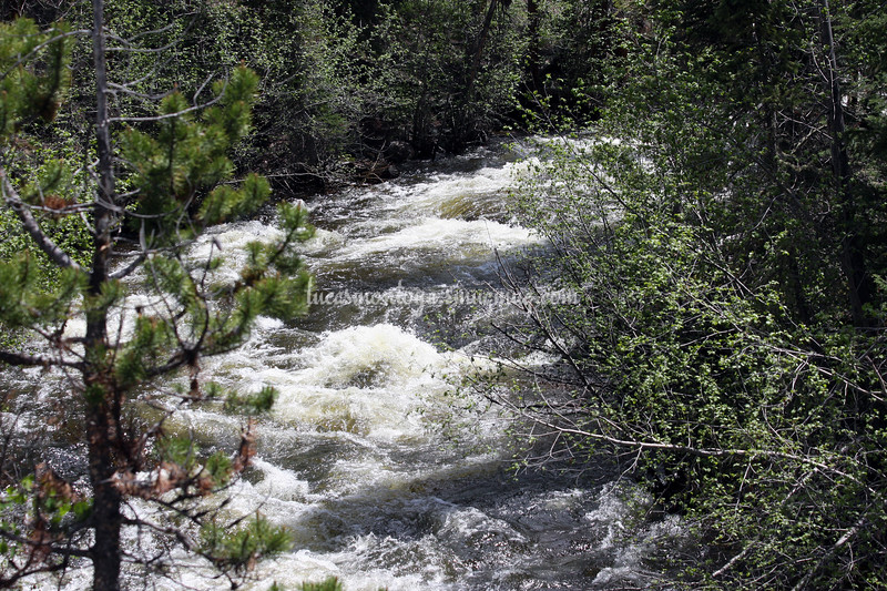 E. Inlet Creek -  Grand Lake, Colorado;  Hiking the E. Inlet Trail - June 2011