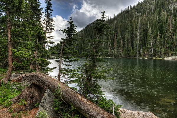 Rocky Mountain National Park 2014