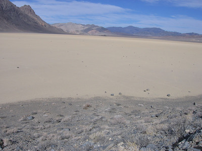 """Looking north with various rocks preparing for departure, and other rocks on their way. An island-like feature called """"The Grandstand"""" is in the distance about two miles away towards the northern end of the playa."""