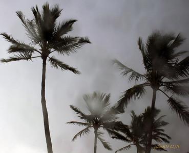 Rain123010