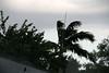 "Rainstorm - Miami, FL  (August 1, 2008)<br /> <br /> An ever-so-slight ""lull"" . . ."