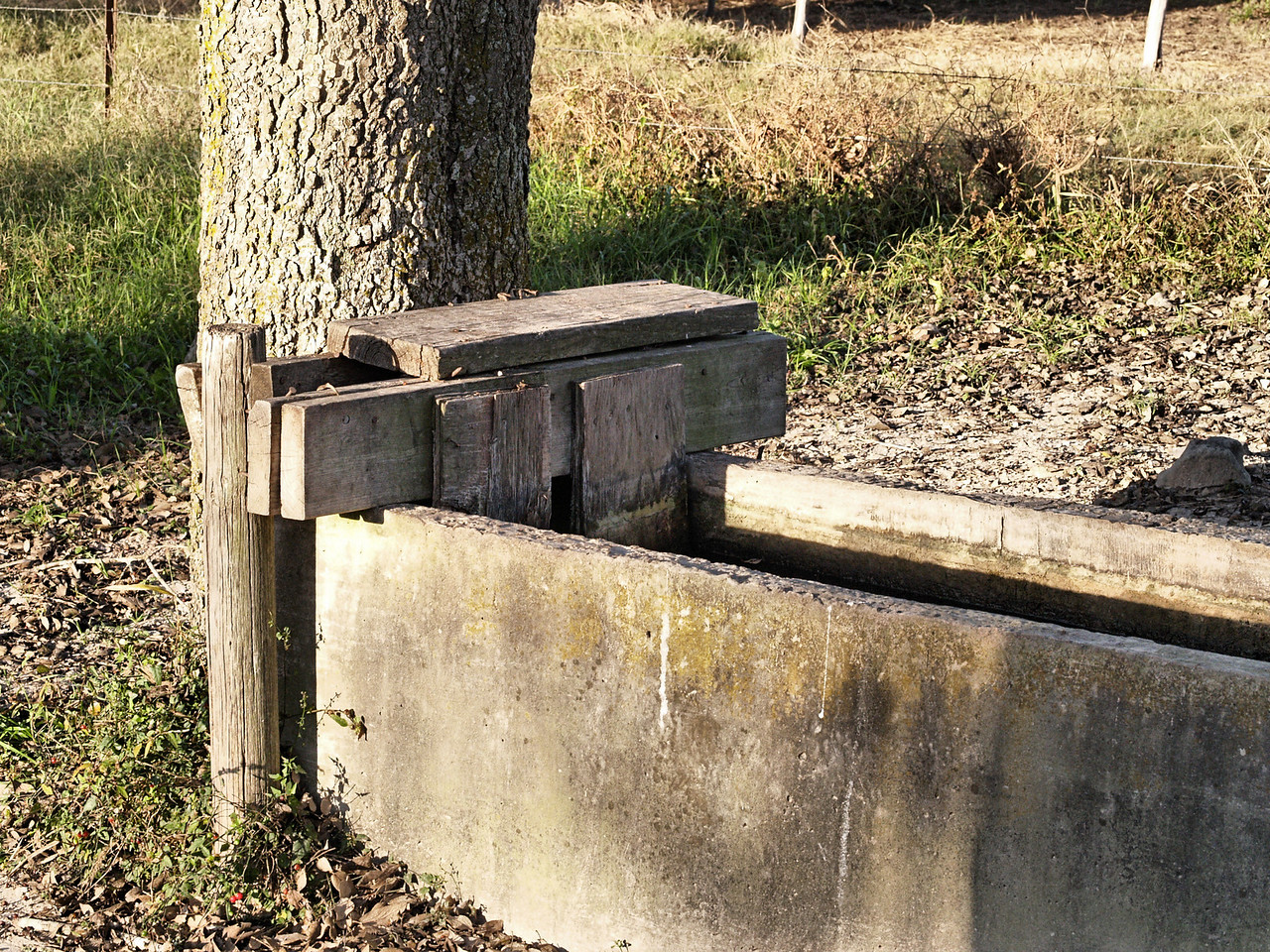 OLYMPUS DIGITAL CAMERA--Water trough.  We once had a calf fall into, and get stuck in the trough in freezing weather.  It was a major operation to overturn the trough, and free the calf before it died.