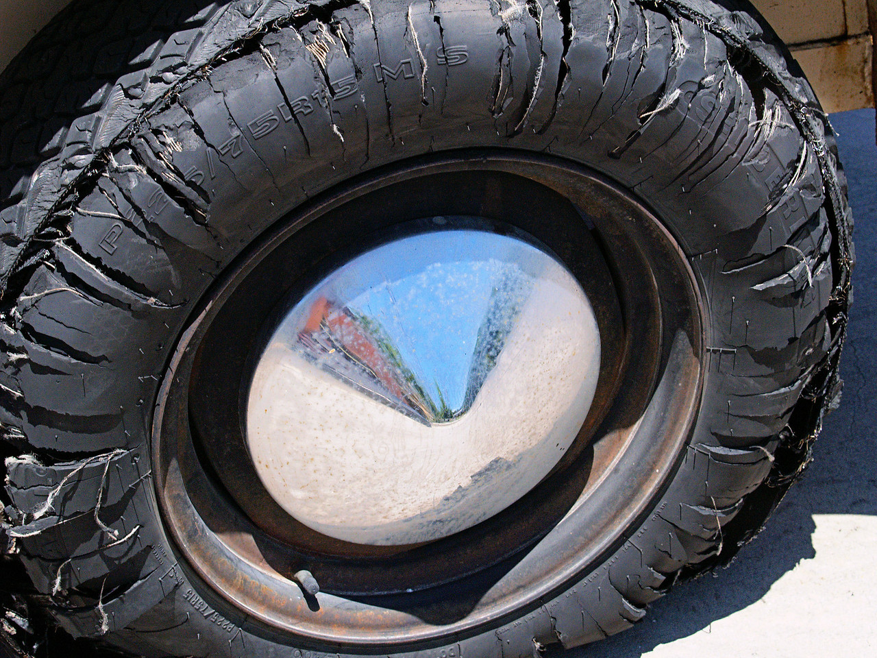 OLYMPUS DIGITAL CAMERA--One of two tires to blow out on the horse trailer.