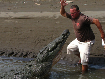 whoa, that's to close. Our guide stops to feed the big guy and almost becomes the lunch!!