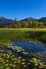 Swan Range near Swan Lake Montana