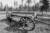 Old Log Wagon near Condon Montana black and white