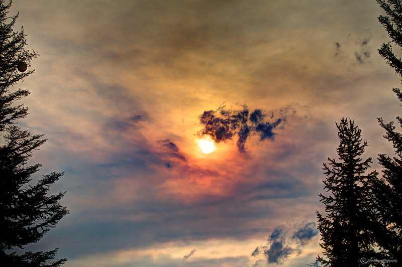 Smokey Sun from Forest Fires with Bee Hive