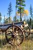 Old Log Wagon near Condon Montana V