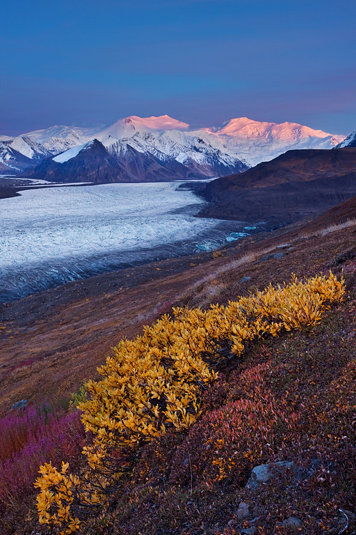 Autumn Tundra, Mount Churchill, and Mount Bona