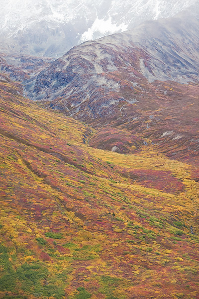 Autumn Tundra, aerial view, Wrangell-St. Elias National Park, Alaska.