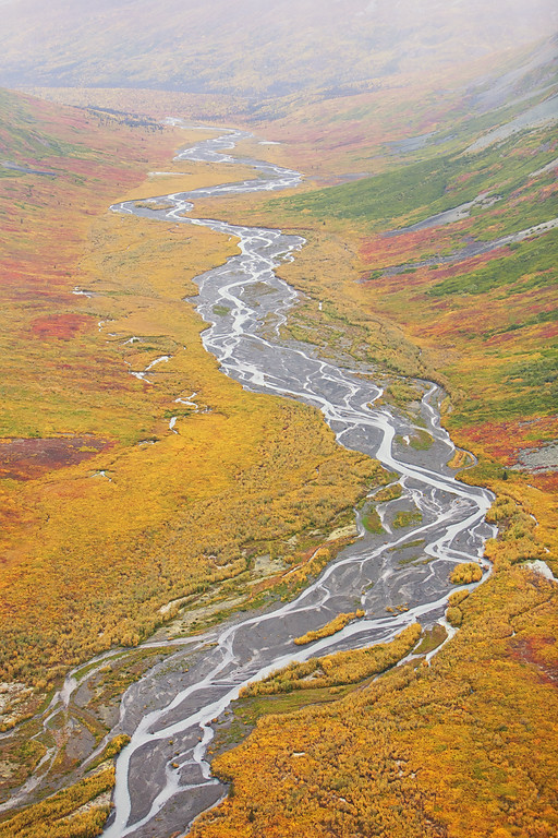 Autumn Stream, aerial view, Wrangell-St. Elias National Park, Alaska.