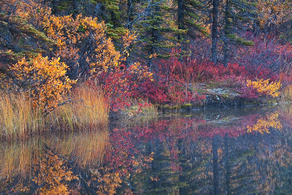 Autumn Lake Reflections