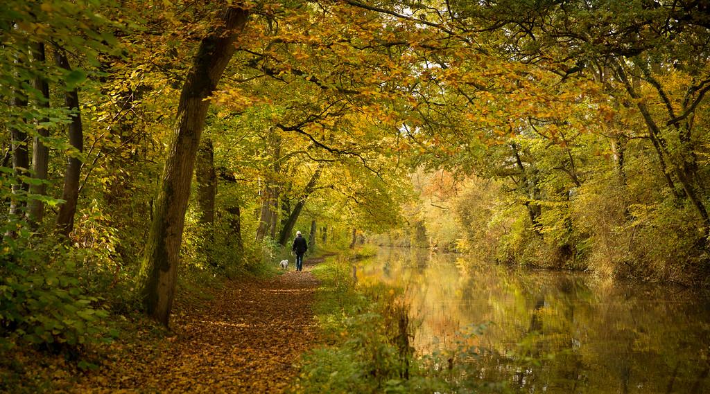 Oxford canal autumn 2