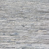 bird over the icy lake surface