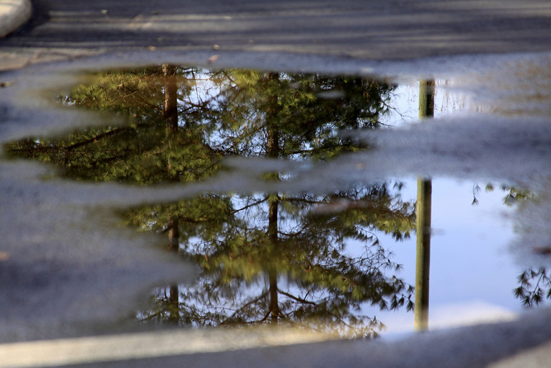 wish the puddle was deeper and larger to get a full shot