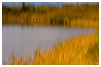 Reflection Pond.
