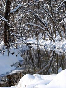 sligo creek Md, blizzard Dec 2009