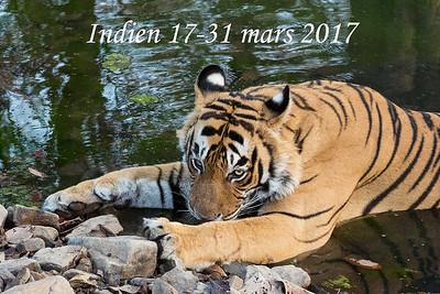 Indien mars 2017