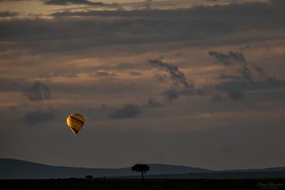 Luftballong över Maasai Mara