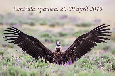 Centrala Spanien april 2019