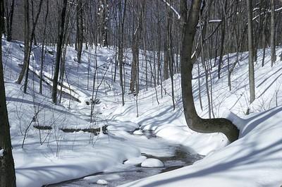 Ridgebury snowscenes in January 1960