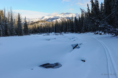 Riley Creek, Denali National Park