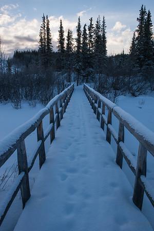 Riley Creek, February 12, 2013