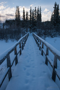 Footbridge over Hines Creek, Denali National Park