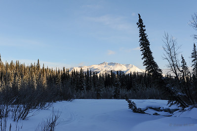 Mt. Healy from Riley Creek, Denali National Park