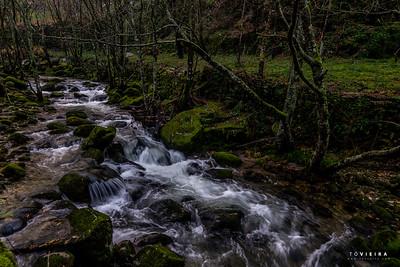 rio Couto