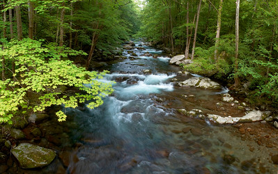 Big Creek as viewed from the bridge, Great Smoky Mountains.
