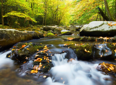 Big Creek in the fall, Great Smoky Mountains.