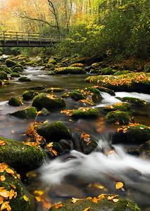 Looking toward the Kephart Prong Trail bridge on a fall day, Great Smoky Mountains near Cherokee, NC.