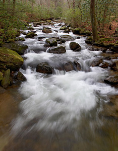 The Middle Saluda River at Jones Gap State Park, near Greenville, SC.
