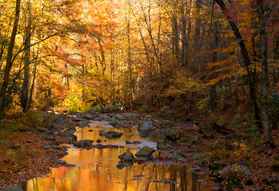 Evening light caused colorful reflections on this river in the Great Smoky Mountains.