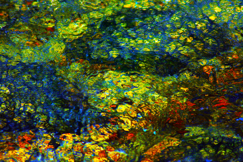 Colors in a Pond