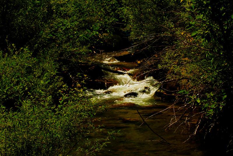 Galena Creek