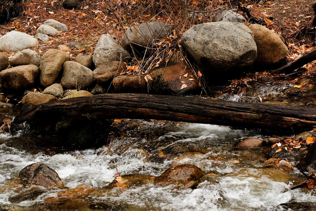 Boulders & Log