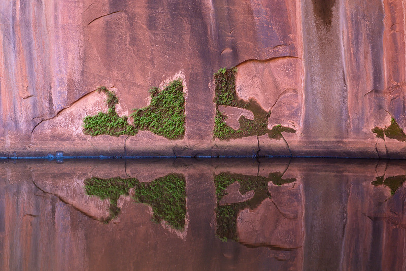 Neon Canyon Reflection