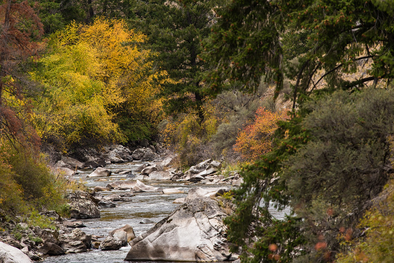 Autumn on Big Creek