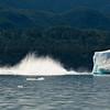 Iceberg Flipping