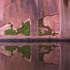 Escalante R - reflections in the water - Neon Canyon