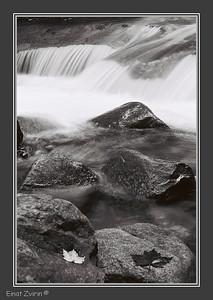 Black > White Flume Gorge, New Hampshire, USA