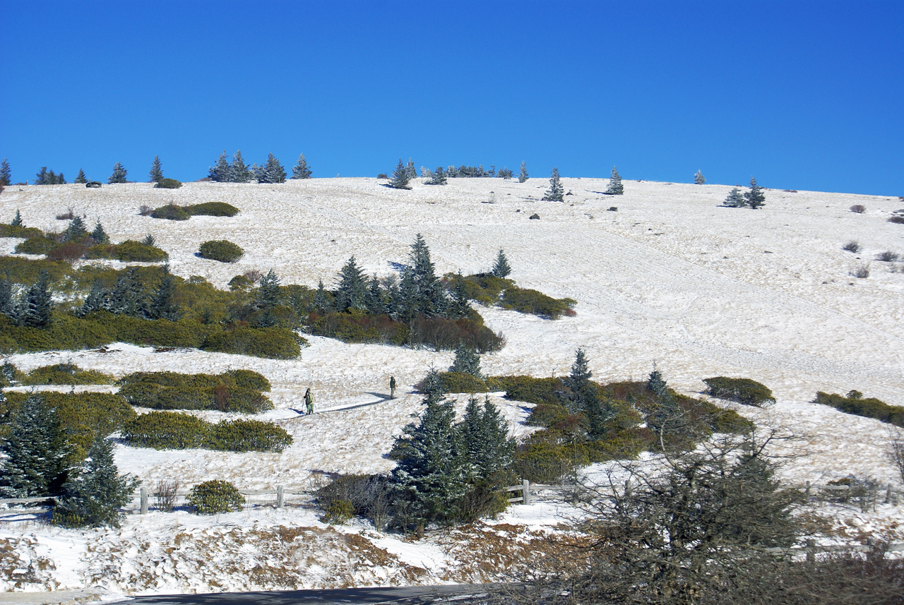One of the balds along the ridge of Roan Mountain. This is part of the Appalachian Trail - Winter, 2008